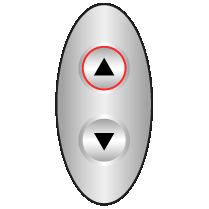 Μπουτονιέρες